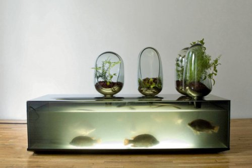 Household objects inspired by biology include Local River, a system by Mathieu Lehanneur for raising fish and plants at home.  Source:  NYTimes