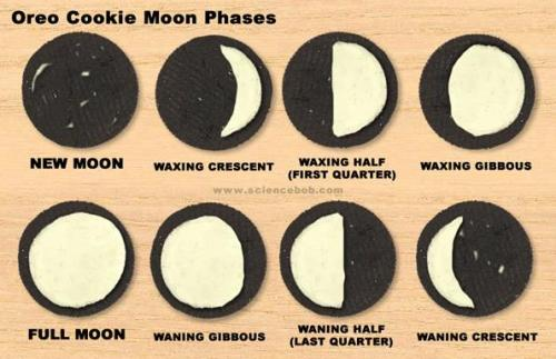 Credit:  Science Bob (Source)